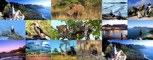 آفریقای جنوبی دنیای شگفت انگیز در یک کشور ! 10