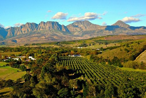 در جستجوی جاذبه های گردشگری آفریقای جنوبی هستید؟ 6