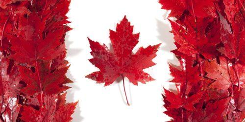 دریافت ویزای کانادا بدون ریجکتی - 7