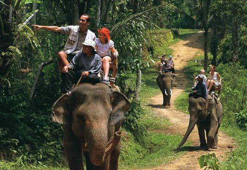 جاذبه های گردشگری بالی